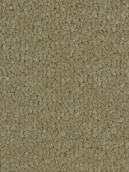 Twist Carpets Victoria Carpets