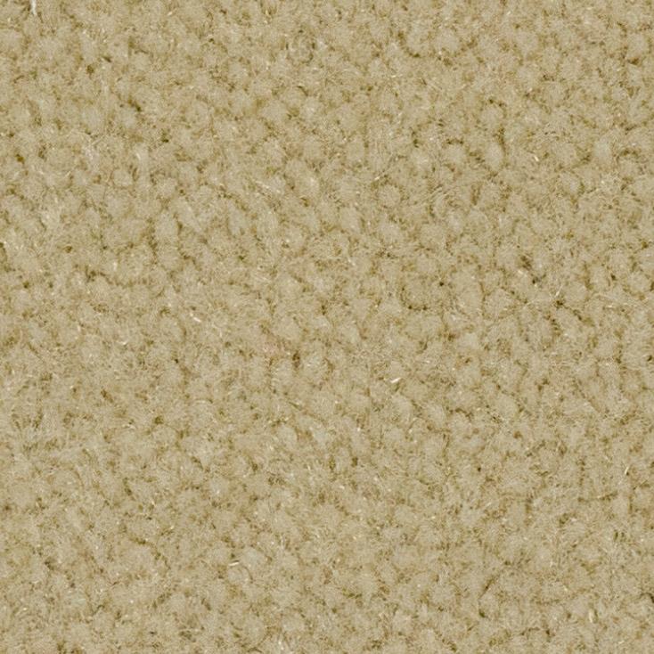 Victoria Carpets Vivacious Velvet Plush