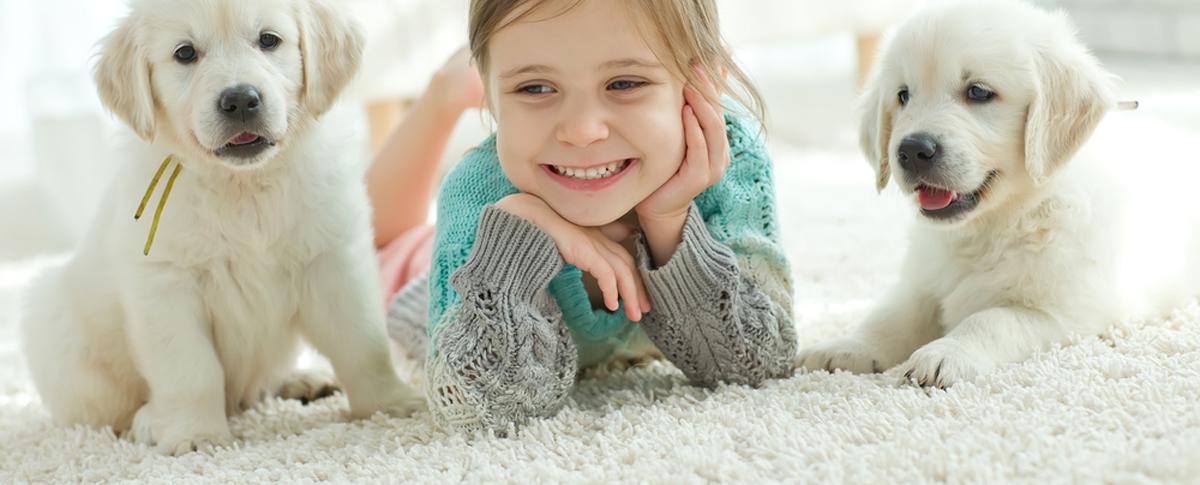, Carpets