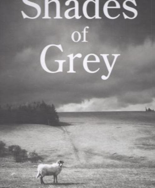 Shades of Grey Loop